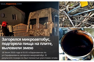 Июльские сводки МЧС: загорелся микроавтобус, выловили гадюку, подгорела пища