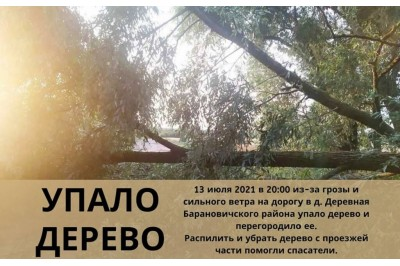 13.07.2021 Гроза повалила на дорогу дерево
