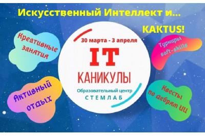 Искусственный Интеллект и... КАКТUS весенний лагерь в Барановичах